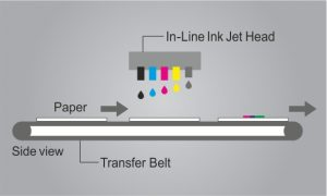 Stabilized Paper Feed